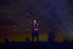 「ミュージカル『刀剣乱舞』 加州清光 単騎出陣2017」ゲネプロより、佐藤流司演じる加州清光。