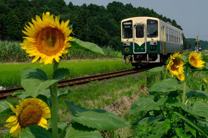 """""""みなと""""にちなんで名付けられたひたちなか海浜鉄道の""""キハ3710""""型車両。(提供:ひたちなか海浜鉄道)"""