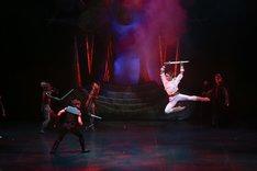 スターダンサーズ・バレエ団「バレエ『ドラゴンクエスト』」より。(c)KiyonoriHasegawa
