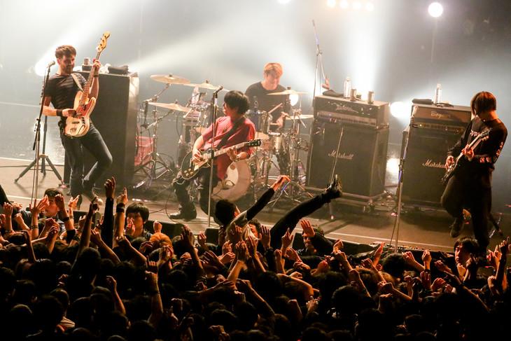MONOEYESのライブの様子。(Photo by Viola Kam [V'z Twinkle])