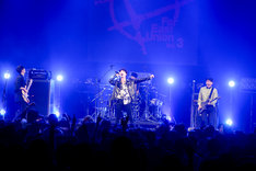 THE SOLUTIONSのライブの様子。(Photo by Viola Kam [V'z Twinkle])