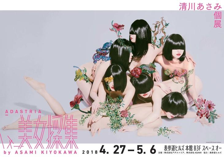 清川あさみ個展「ADASTRIA 美女採集」by ASAMI KIYOKAWA ビジュアル