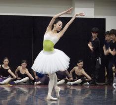 東京バレエ団「ブルメイステル版『白鳥の湖』」公開リハーサルより。(Photo:Mizuho Hasegawa)