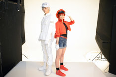 左から和田雅成扮する白血球(好中球)、七木奏音扮する赤血球。