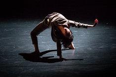 愛知県芸術劇場ミニセレ「ダンス・セレクション」より、小暮香帆「ミモザ」の様子。(撮影:羽鳥直志)