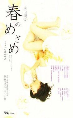 シアターZOO企画公演 プロト・パスプア #04「春のめざめ」チラシ