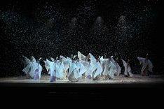 第3回 日本舞踊 未来座「=彩(SAI)=『春夏秋冬』」より。