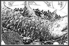 油爆海鮫(ユウバオハイジャオ)(サメの丸ごと1匹揚げ)