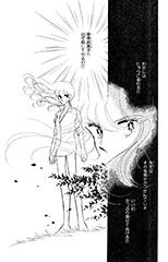 妹を曽根原に殺された倫子は、復讐を決意する。