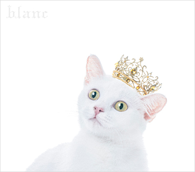 "Aimer「BEST SELECTION ""blanc""」"