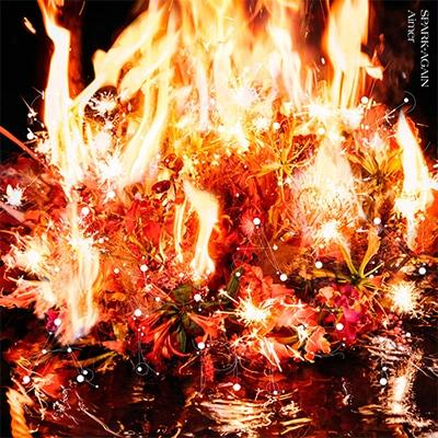 Aimer「SPARK-AGAIN」初回限定盤