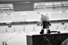 "「BUMP OF CHICKEN STADIUM TOUR 2016 ""BFLY""」日産スタジアム公演開演前の様子。"