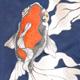 溝呂木世蘭