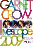 ライブDVD「GARNET CROW livescope 2009 ~夜明けのSoul~」をAmazon.co.jpでチェック