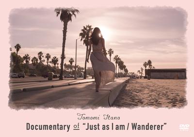 板野友美「Documentary of 'Just as I am / Wanderer'」DVD