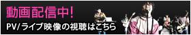 PV/ライブ映像の視聴はこちら
