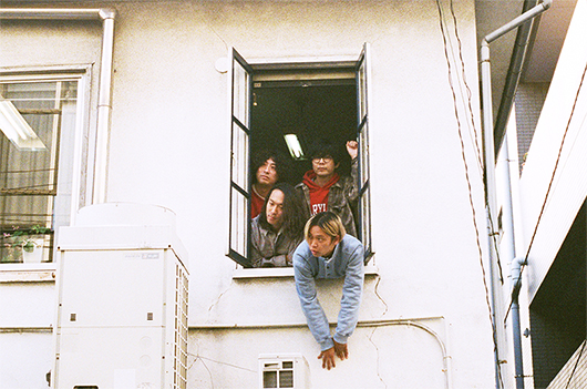 althouseの窓から身を乗り出すシャムキャッツ。