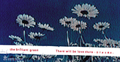 the brilliant green「There will be love there~愛のある場所~」ジャケット