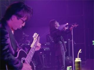 DISC 8「TMN final live LAST GROOVE 5.19」のワンシーン。