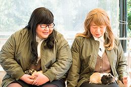 モルモットと触れ合うメイプル超合金・安藤と森三中・大島(左から)。