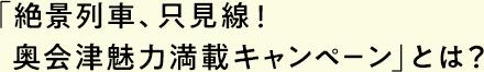「絶景列車、只見線!奥会津魅力満載キャンペーン」とは?