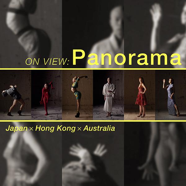 スー・ヒーリー「ON VIEW:Panorama」